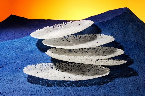 Francis Bitonti Studio offers 3d printable models in Cloud