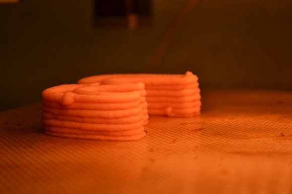 The F3D Printer can print not only pizza, but also cooks it in less than 20 minutes
