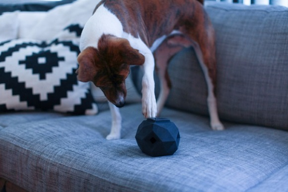 The Odin, a stylish and entertaining 3D printed modular dog toy