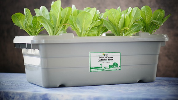 3D Printable Mini-Farm Grow Box System represented by Food Rising
