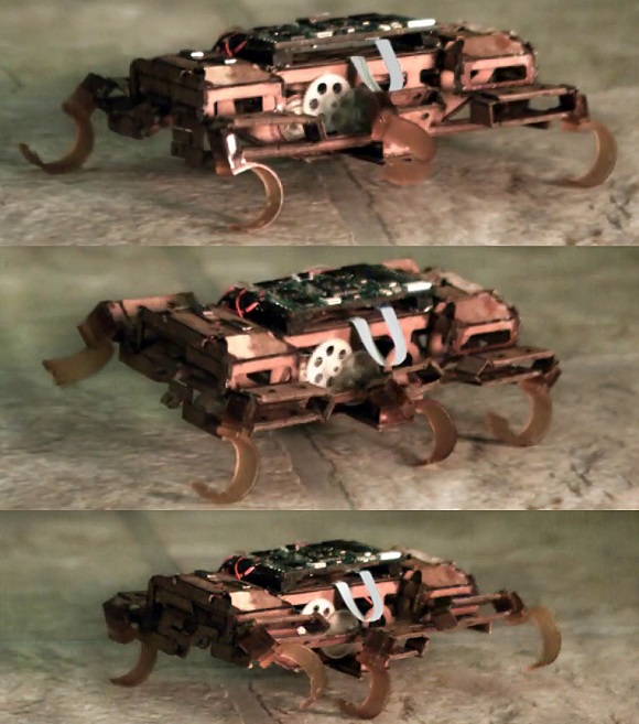The team from UC Berkley develops the quickest Robotic Roach Using 3D Printed Parts