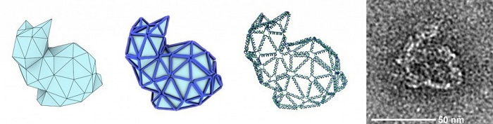 DNA Origami: The Science of Nanostructuring
