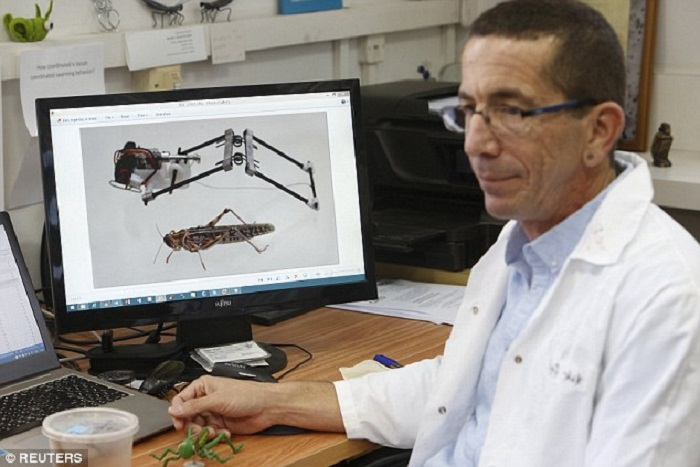 The Plague-inspired Jumping Locusts in 3D Print