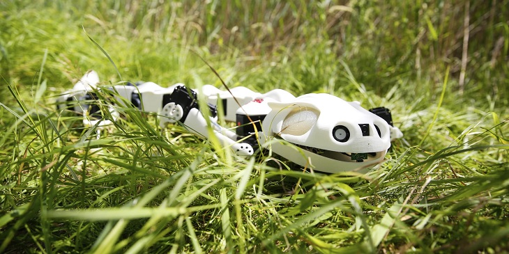 Pleurobot: A 3D Printed Machine Created by EPFL to Study Salamanders