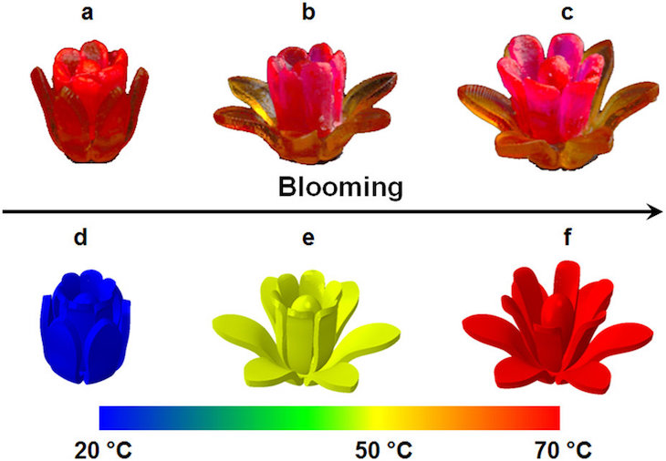 3D Printed Shaped-Memory Polymers